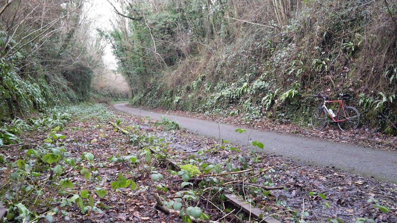 Wells, Mells & Old Rail Trail 100