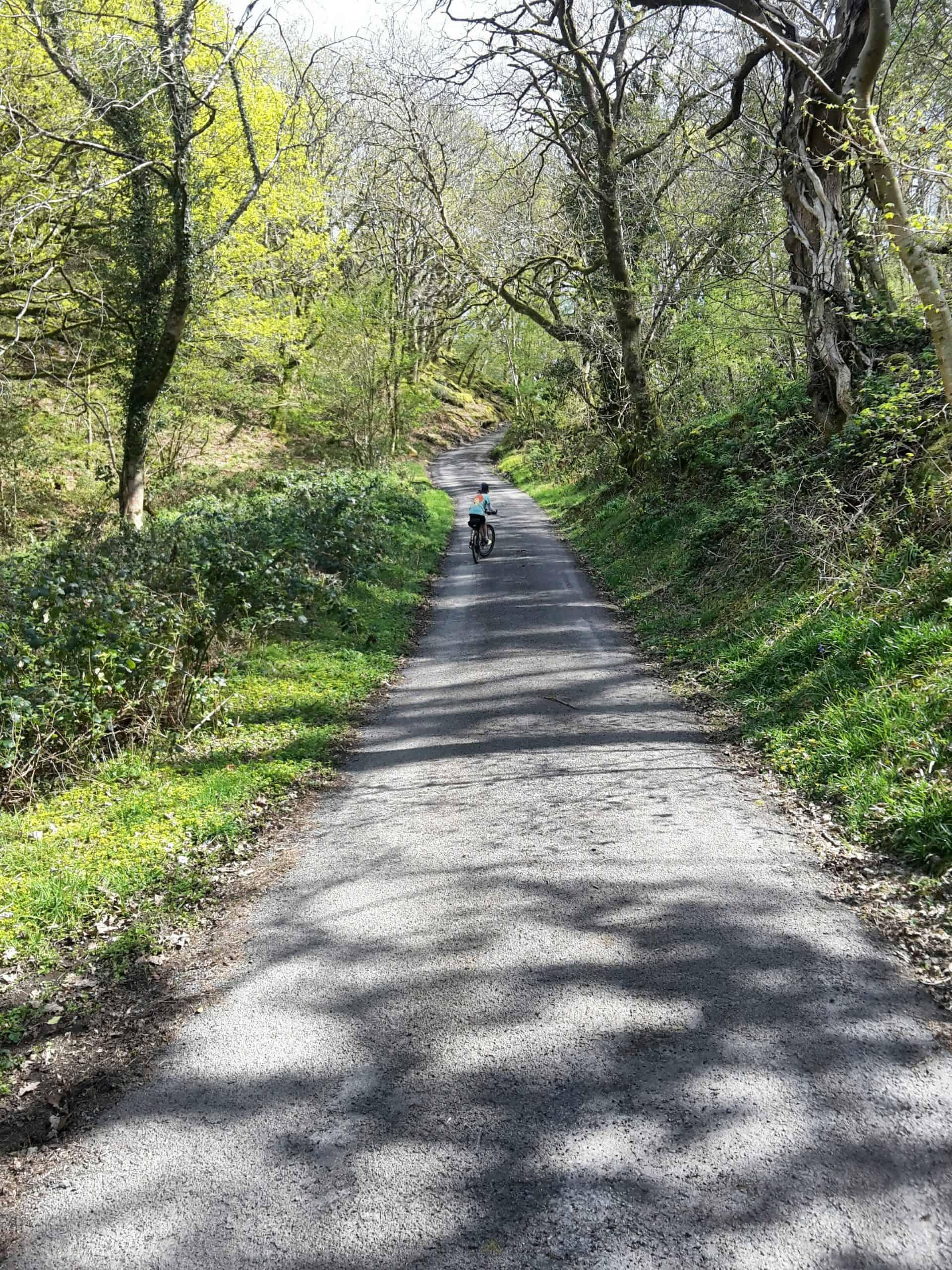 Snowdonia: Climbing Up, Riding Back 79