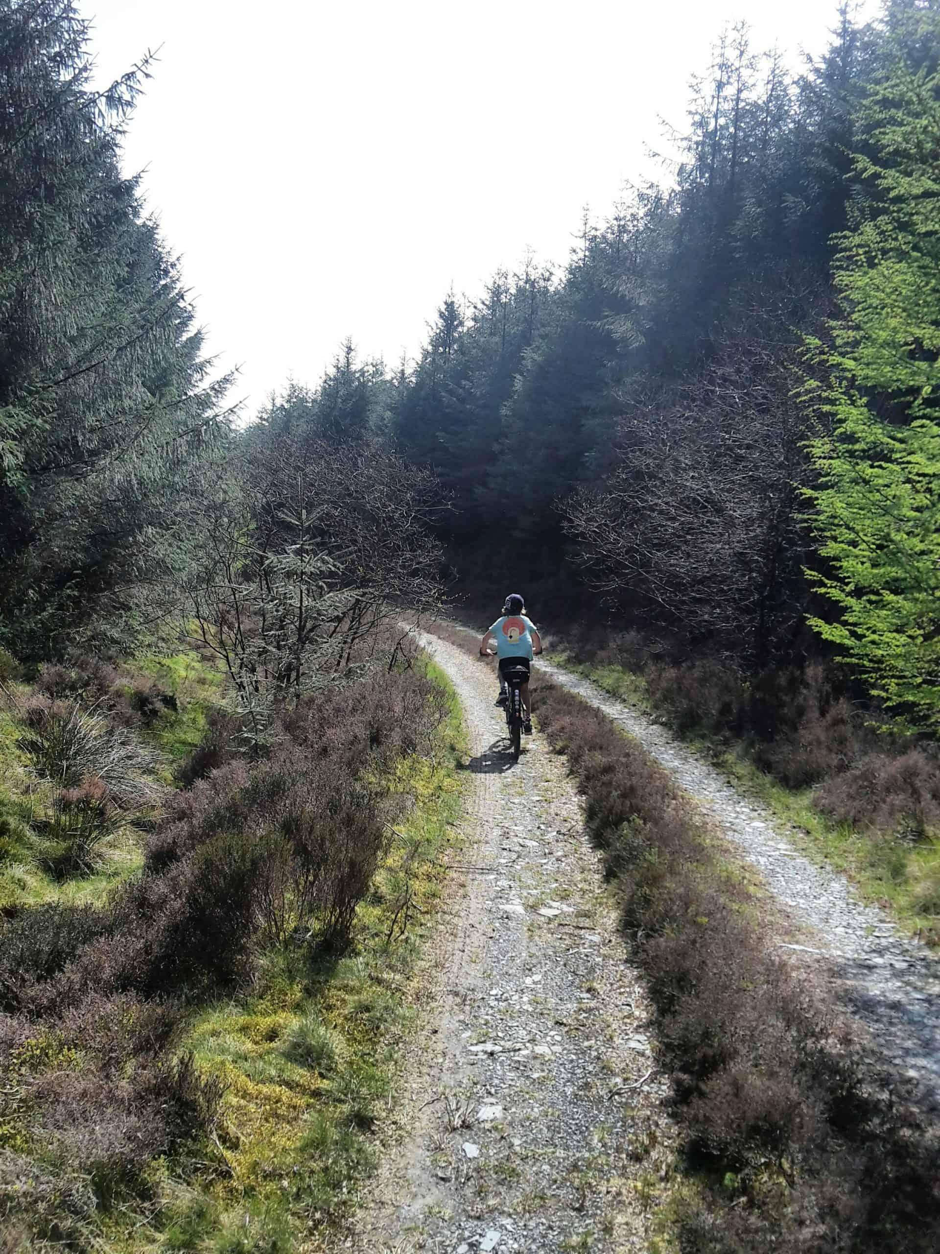 Snowdonia: Climbing Up, Riding Back 95
