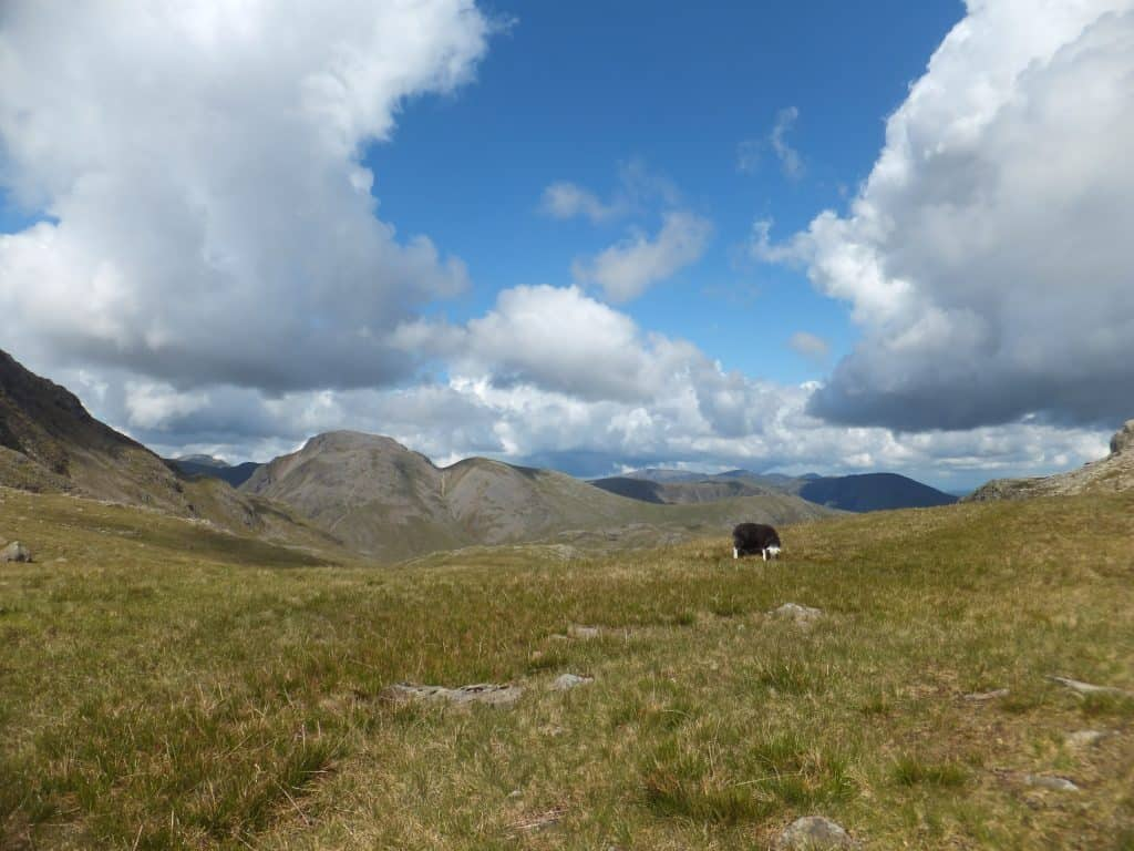 3 of 5 - Scafell Pike 15